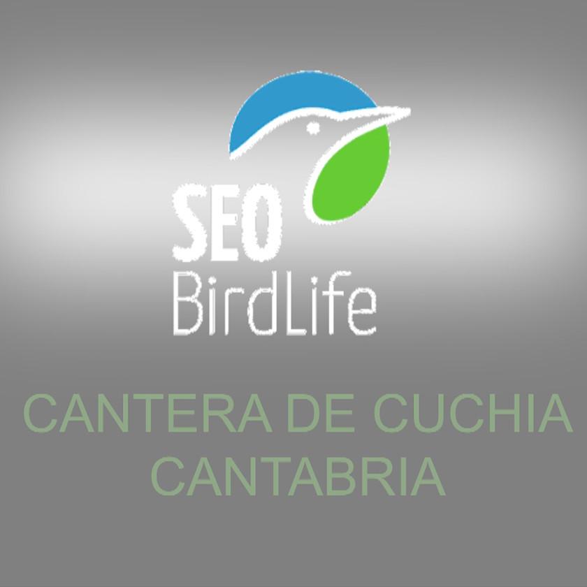 Cantera de Cuchia, seo birdlife cantabria